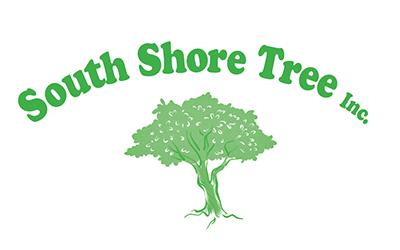 SOUTH SHORE TREE
