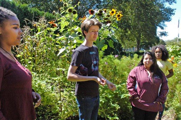 Bridgehampton students Ayamma El, Milo Youngerman, Patricia Figueroa and Amoy Webley in the Sprouts garden.   DANA SHAW