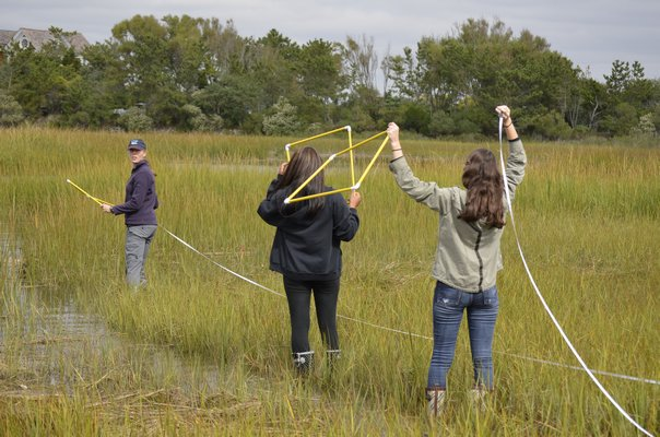 Southampton High School science students working in the field. BY ERIN MCKINLEY