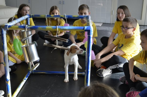 Isla, a puppy up for adoption at Bideawee in Westhampton, playing with a playground set made by students in Remsenburg-Speonk Elementary School's Odyssey Angels team. ANISAH ABDULLAH