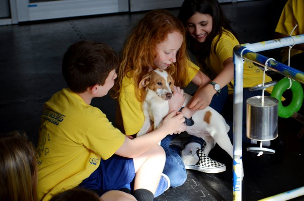 Students in Remsenburg-Speonk Elementary School's Odyssey Angels team playing with Isla, a puppy up for adoption at Bideawee in Westhampton. ANISAH ABDULLAH