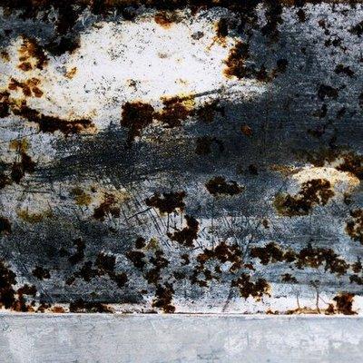 "Nika Nesgoda's photograph ""Landscrapes #33"""