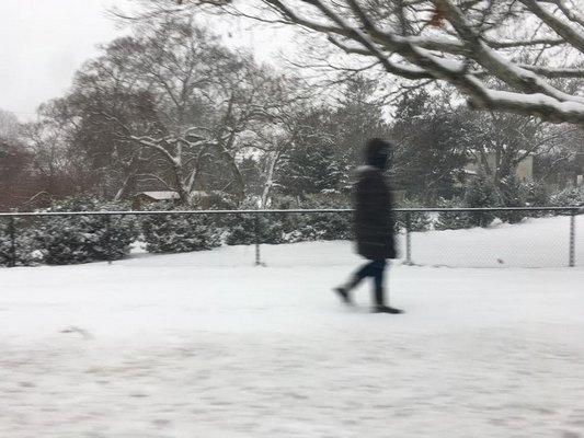 A person walks through the snow in Hampton Bays on Saturday morning.  DANA SHAW