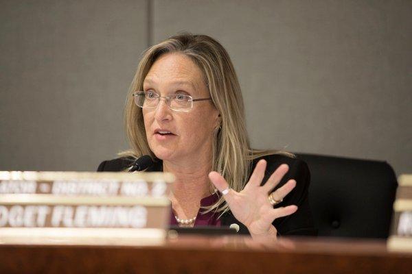 Suffolk County Legislator Bridget Fleming