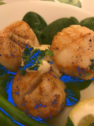 Seared scallops with sauce BY JANEEN SARLIN