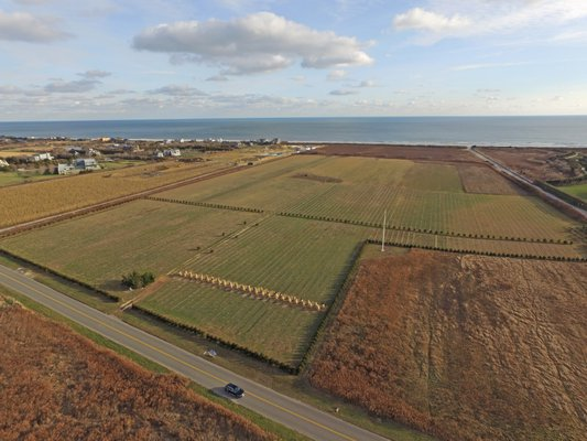 Co-owners of a large oceanfront parcel have battled over conflicting applications for the property.