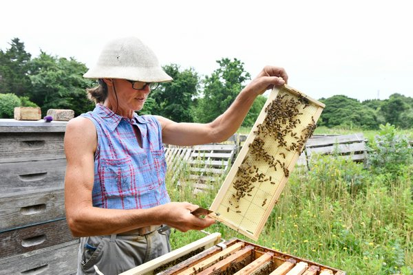 Beekeeper Mary Woltz with her hives at Marder's in Bridgehampton.  DANA SHAW