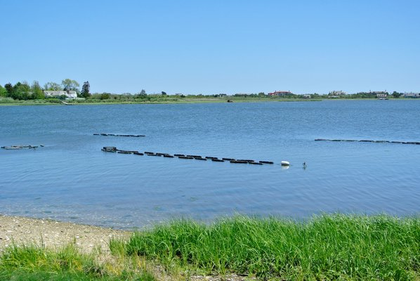 Oyster beds at the shellfish hatchery on the Shinniecock Reservation. DANA SHAW