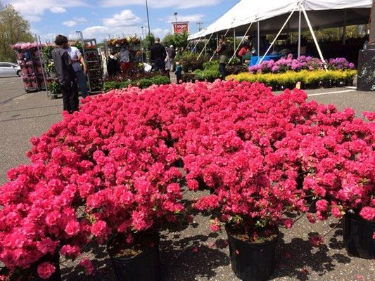 The 23rd Annual East End Garden Festival runs from 9 a.m. to 6 p.m. on May 10-12, and from 9 a.m. to 2 p.m. on May 13 at Tanger Outlets in Riverhead. COURTESY RAJESH PATEL