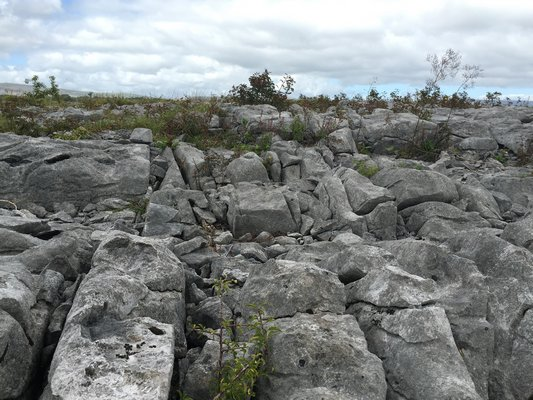 The Burren, a limestone landscape in the west of Ireland. LISA DAFFY