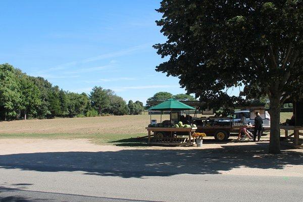 The Weigley family farmland and the Babinski farm stand in Wainscott. KYRIL BROMLEY