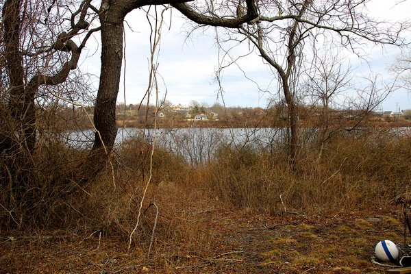 The land at the end of Endicott Road on Shepherds Neck, on Fort Pond, was approved for purchase by East Hampton Town for $1.1 million. Kyril Bromley