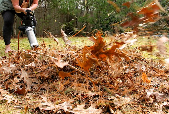 April 8 -- Activists are looking to minimize or altogether ban the use of leaf blowers in Southampton Town, at least in summer.