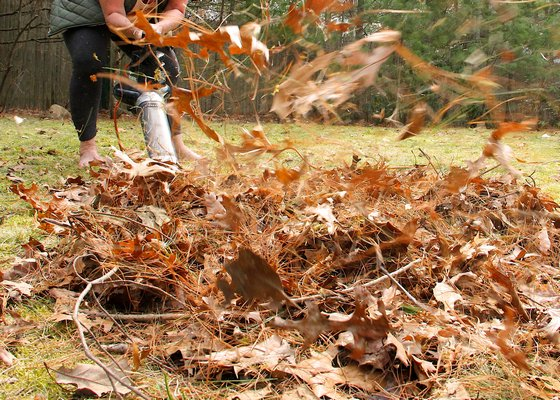 Activists are looking to minimize or altogether ban the use of leaf blowers in Southampton Town. KYRIL BROMLEY