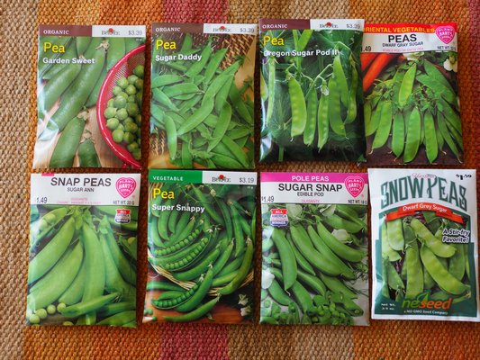Growing Peas Can Be A Fun Gardening Activity To Share With