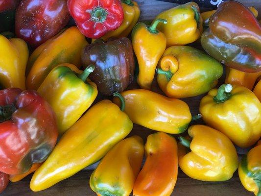Peppers.  HANNAH SELINGER
