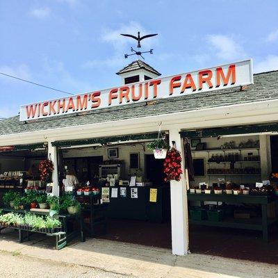 Wickham's Fruit Farm.  HANNAH SELINGER