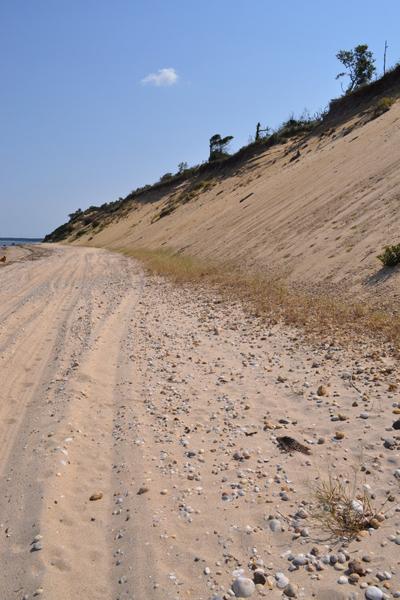 View of the erosion, looking east.   Elizabeth Laytin