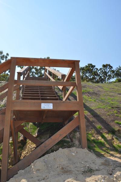 Recently installed beach stairs.  Elizabeth Laytin