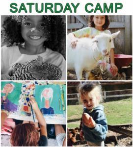 Saturday Camp