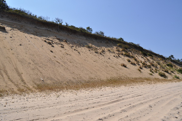 Erosion undercutting.  Elizabeth Laytin