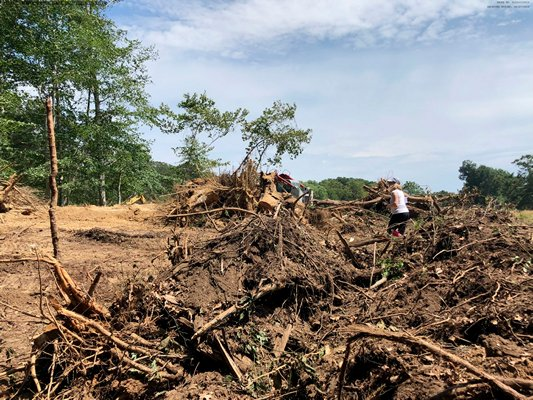 The Peconic Land Trust obtained a temporary restraining order on Thursday to prevent further clearing at a property on Stony Hill Lane in Amagansett that it says is protected by a conservation easement. COURTESY PECONIC LAND TRUST