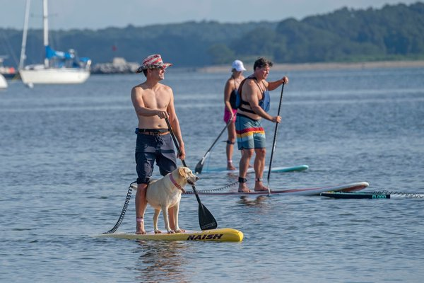 Chris Orr on the water with his paddleboard partner Penelope during the annual Paddle for Pink at Havens Beach on Saturday morning.