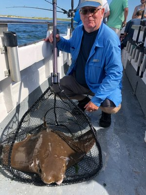 Huge numbers of cownose stingrays have invaded local waters in the last couple of weeks. The big rays are a good fight but a nuisance to fishermen, mostly. They are supposed to be very good eating, however.