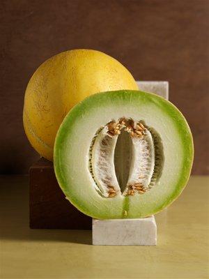 Ashkahabad, an inodorus group melon from Turkmenistan. VICTOR SCHRAGER