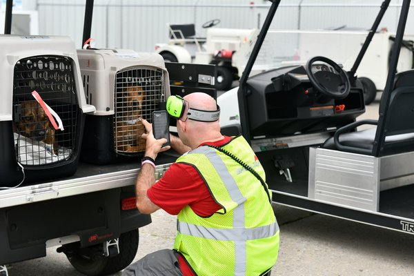 Chad Johnson, a supervisor for Sheltair, greets one of the dogs from the Bahamas.