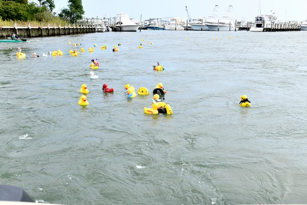 Ducks in the water at the annual Hampton Bays Civic Association duck race.