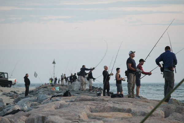 Striped bass fishermen are debating how best to reduce the number of fish they kill each year to help the species rebuild.