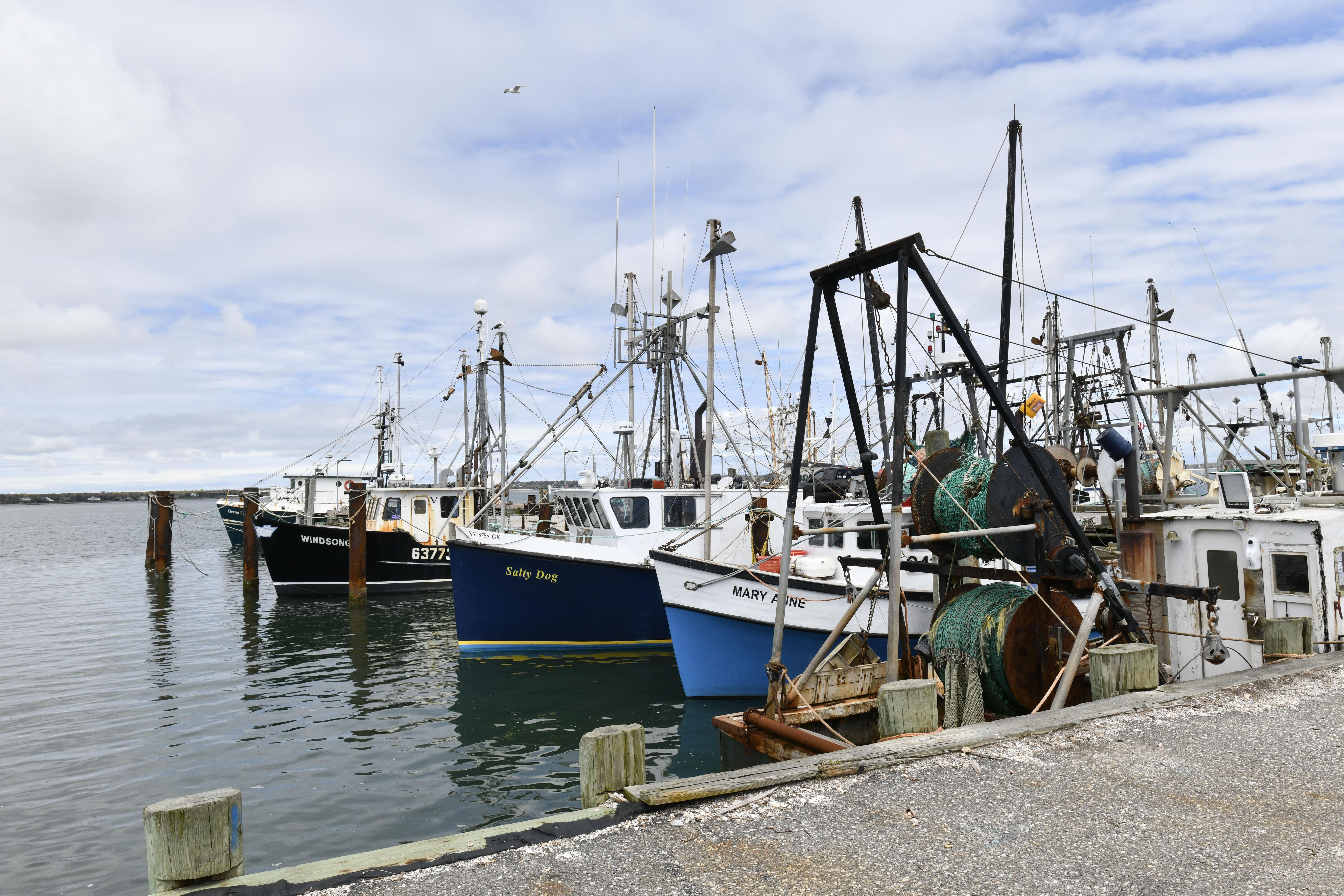 The Shinnecock Commericial Dock in Hampton Bays.  PRESS FILE