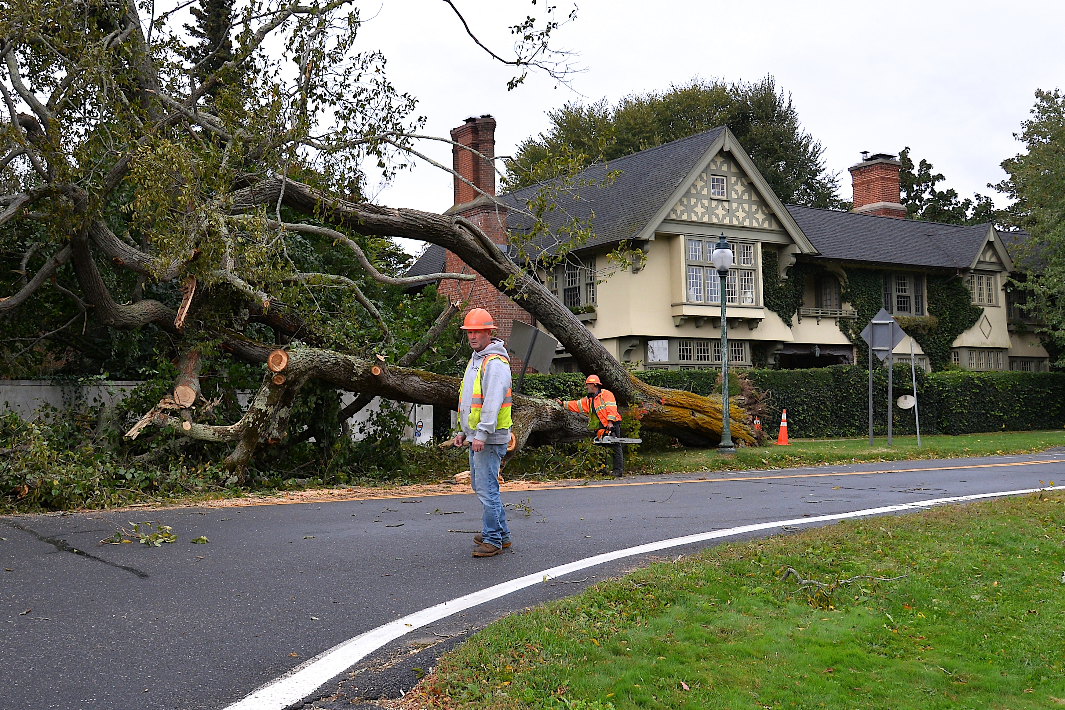 A large tree blew down at around 10 a.m. on Thursday on Main Street in East Hampton Village. A section of Main Street near Baker House 1650 was closed to traffic while New York State Department of Transportation crews worked in the rain and wind to cut up and remove the tree.  KYRIL BROMLEY