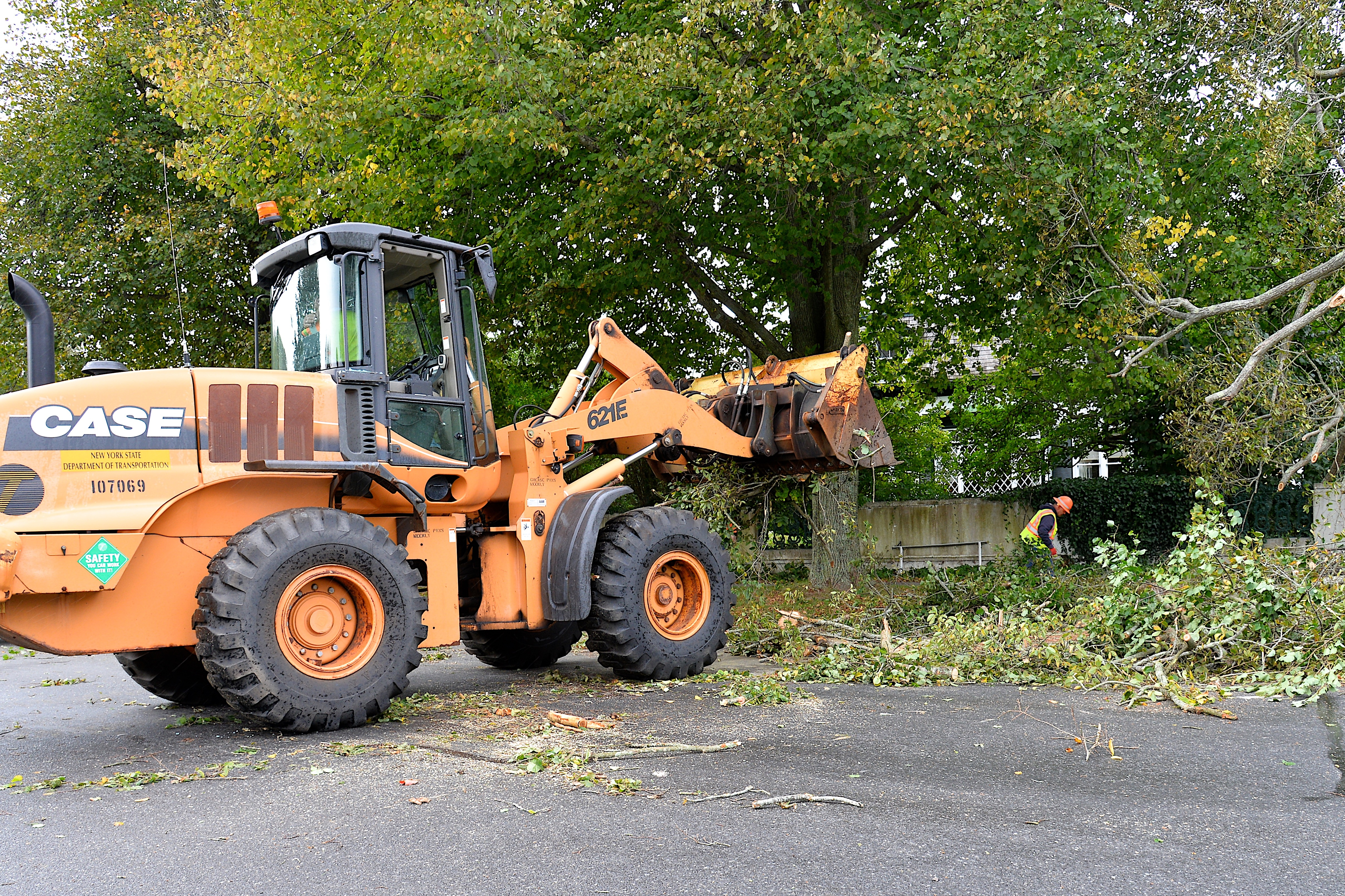 Crews were removing the tree on Thursday morning.  KYRIL BROMLEY