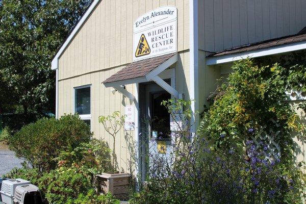 The Evelyn Alexander Wildlife Rescue Center in Hampton Bays. RACHEL VALDESPINO