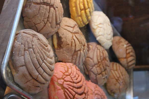 Conchas, a Mexican sweet bread, baked fresh daily.