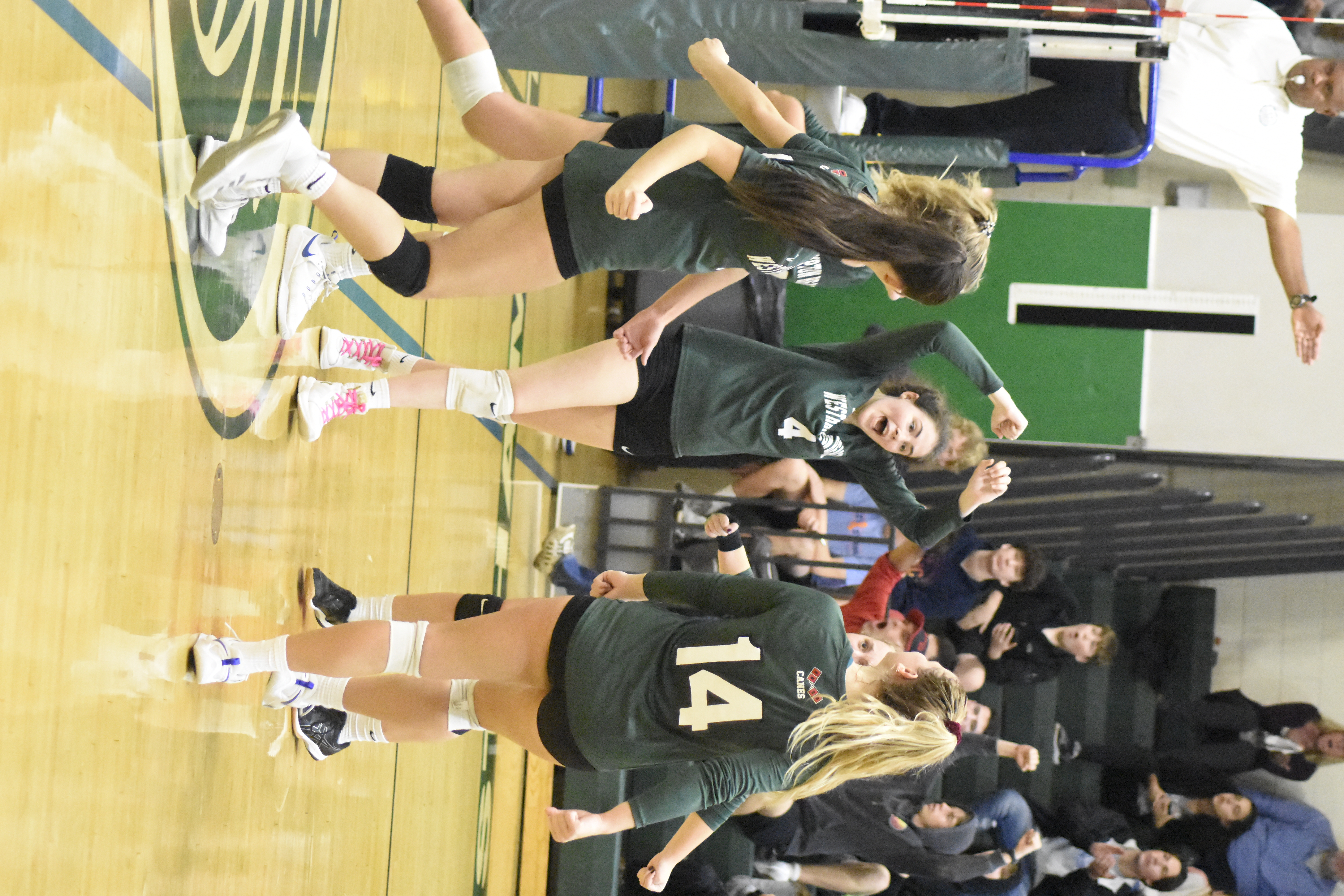 The Lady 'Canes celebrate a point.