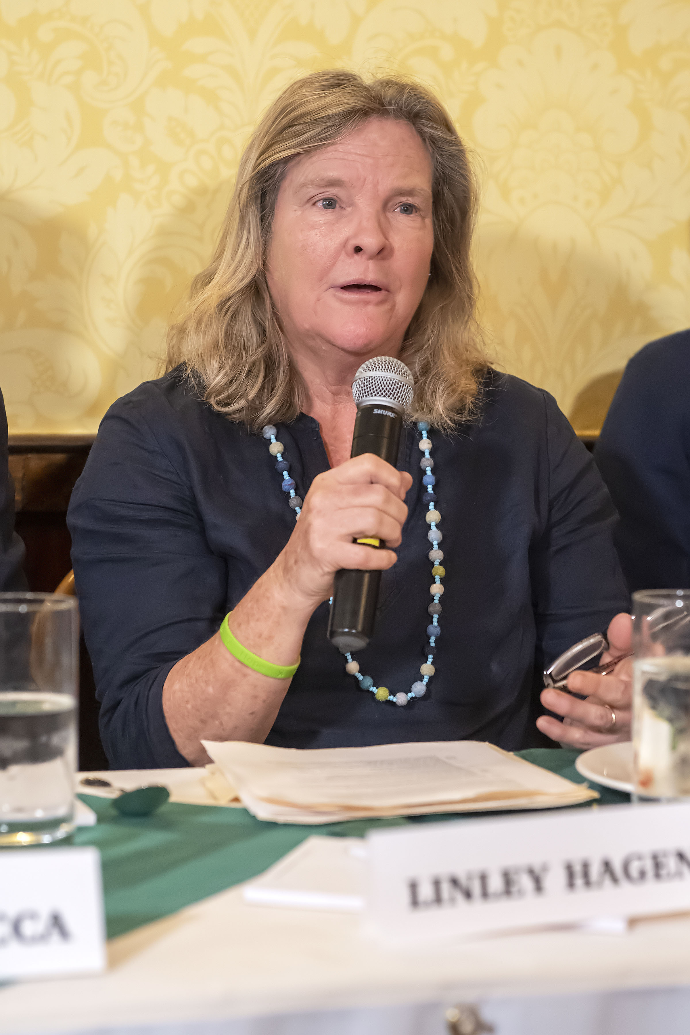 Panelist Linley Hagen speaks during the Express Sessions - Sag Harbor Public Spaces event at the American Hotel in Sag Harbor on Friday.   MICHAEL HELLER