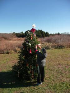 SOFO: Annual Decorate a Holiday Tree for the Birds