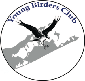 SOFO: SOFO's Young Birders Club Meeting