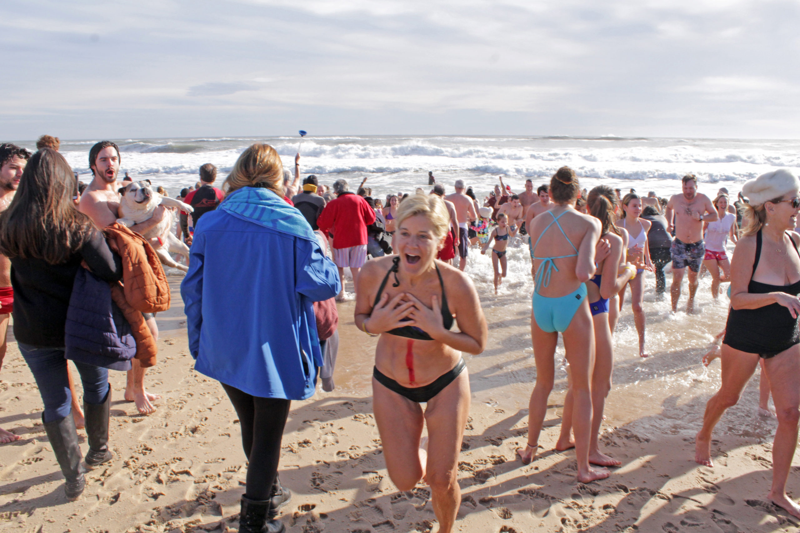 The 2019 polar bear plunge to benefit the East Hampton Food Pantry.       PRESS FILE