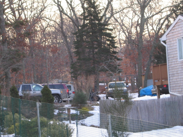 A photo of several cars parked behind the home on 30 Copeces Lane taken at appoximately 8 a.m.