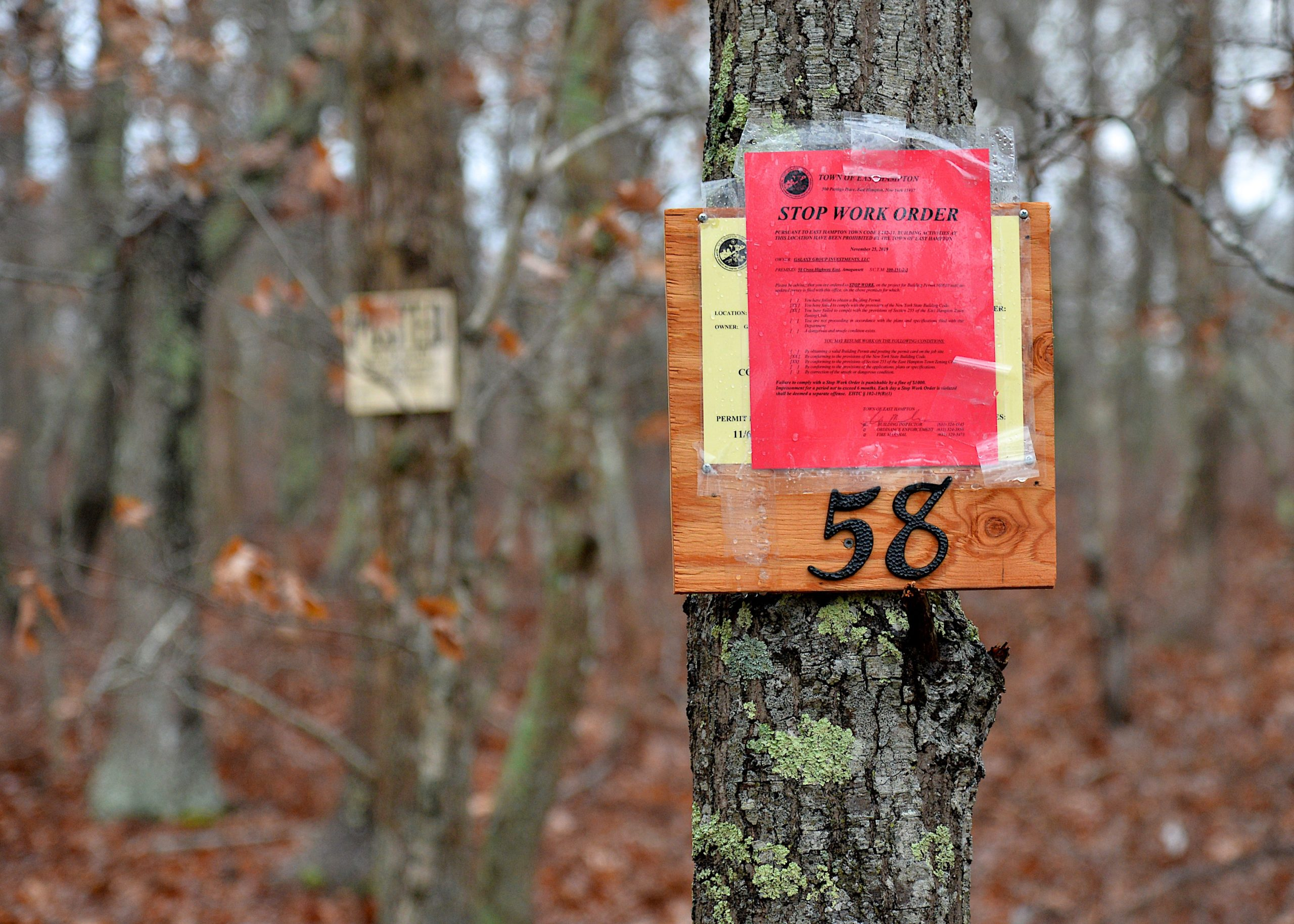 East Hampton has imposed a stop-work order on a the clearing of an Amagansett property that has been the subject of a legal and historical dispute over an unimproved roadway that appears to cut across the land.