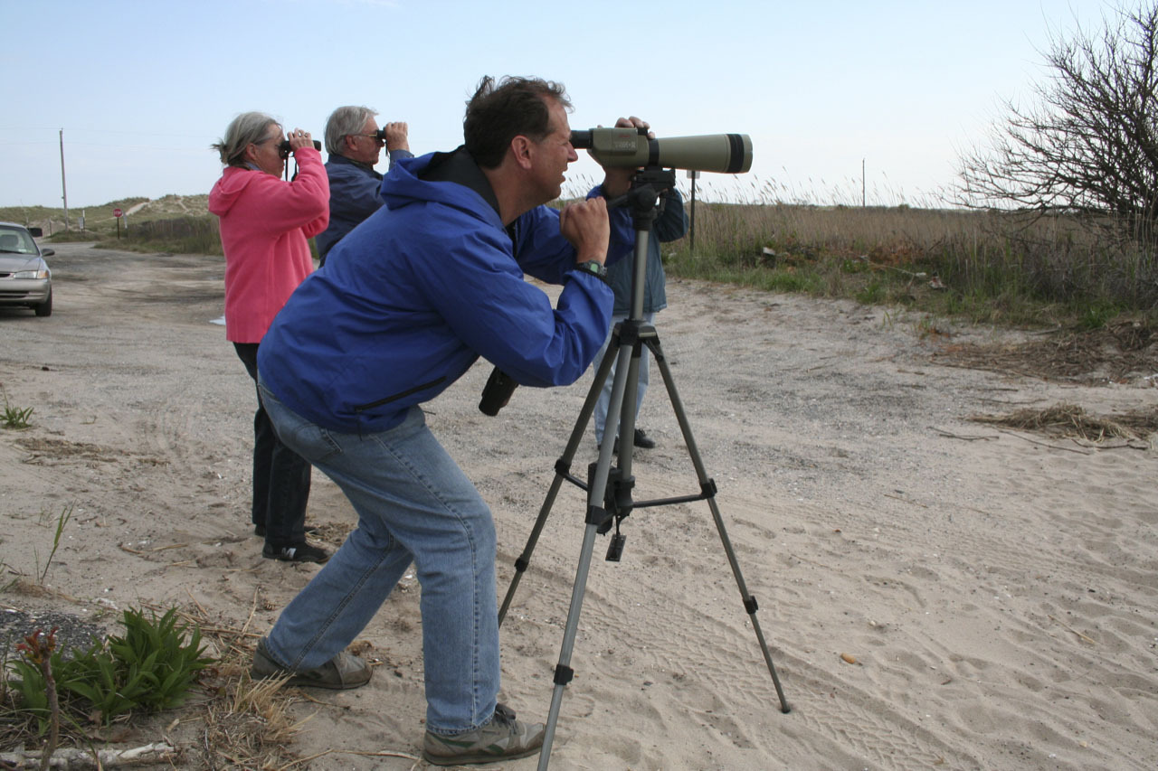 Consider joining expert birders on the 120th annual Christmas Bird Count; no experience, just binoculars, necessary.