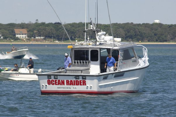 A bottlenose dolphin was removed from Sag Harbor Cove on Friday afternoon.  DANA SHAW