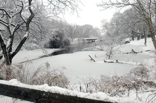 Mill Pond in Water Mill on Modnay afternoon.  DANA SHAW