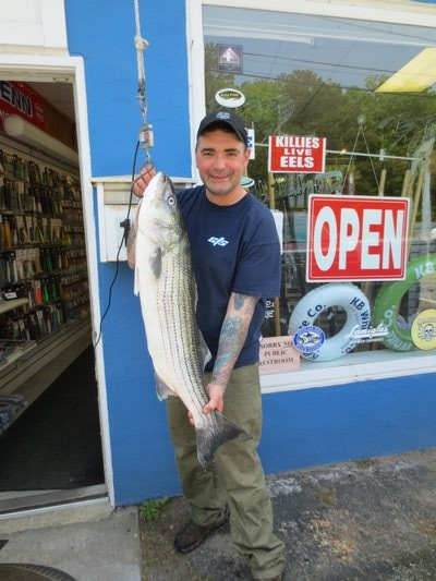 Bert Rusciutto beached this 17 pound striped bass over the weekend. Capt. Scott Jeffrey/East End Bait & Tackle