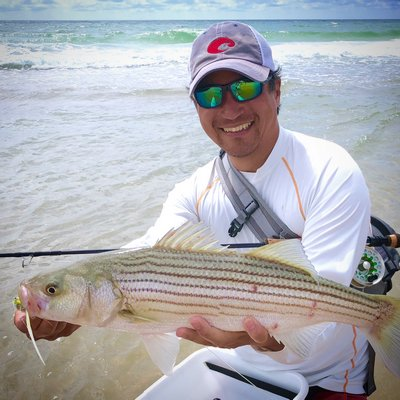 Luyen Chou and one of the small striped bass that have been gorging themselves on sandeels along local beaches all month.