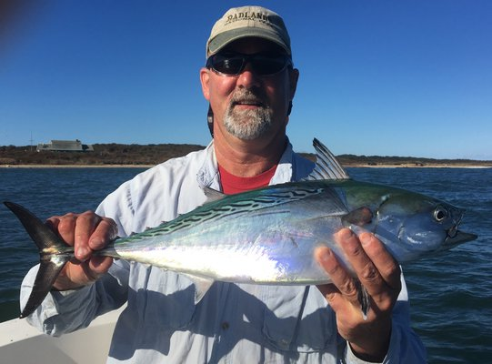East Hampton Town Councilman Peter Van Scoyoc with a one of the little tunny
